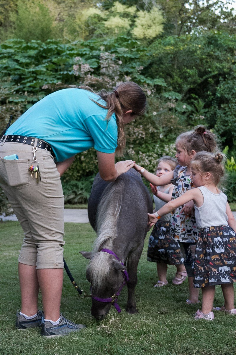 Tulsa Zoo Summer Camps