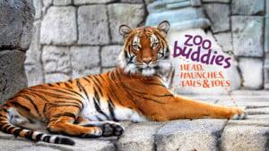 Zoo Buddies: Head, Haunches, Tails & Toes--Fall @ Tulsa Zoo | Tulsa | Oklahoma | United States