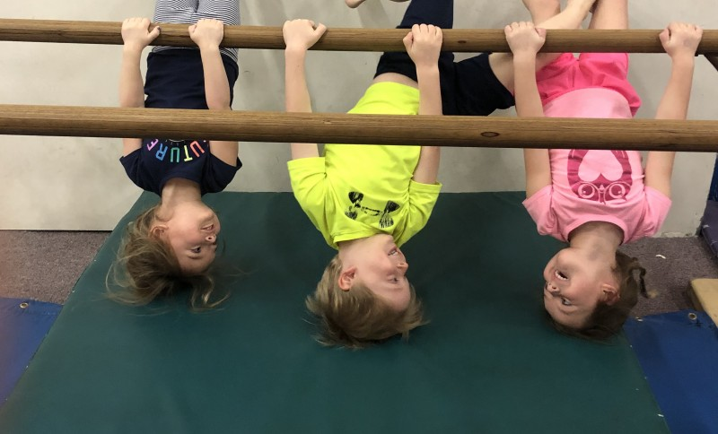 Aim High Academy Gymnastics and Ninja Summer Camps