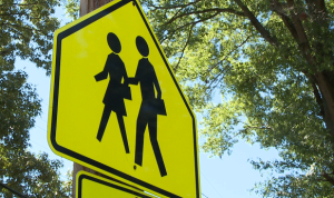 school-sign-crosswalk.png
