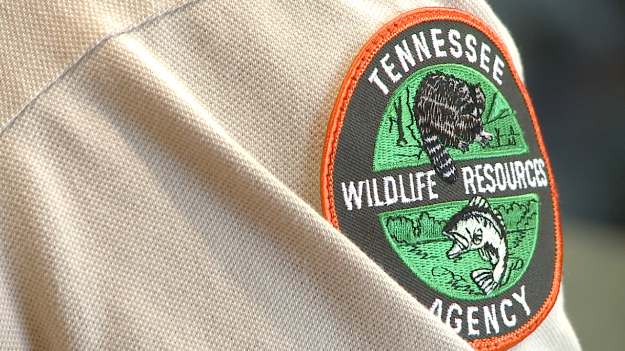 Thousands of tenn hunting fishing licenses to expire soon for Tennessee fishing license online