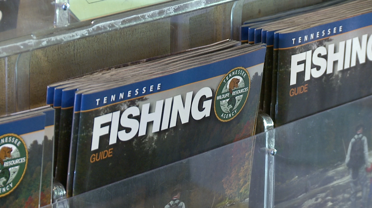 Free fishing day is saturday in tennessee wbbj tv for Free fishing day