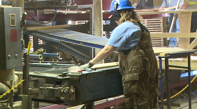 West Tennessee sawmill receives state grant, plans expansion - WBBJ TV