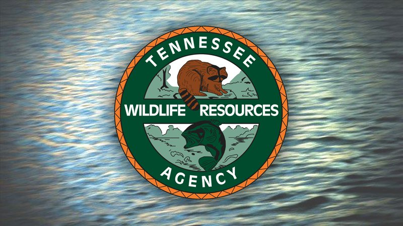 TWRA: 1 boating-related death, 9 BUI arrests over holiday weekend