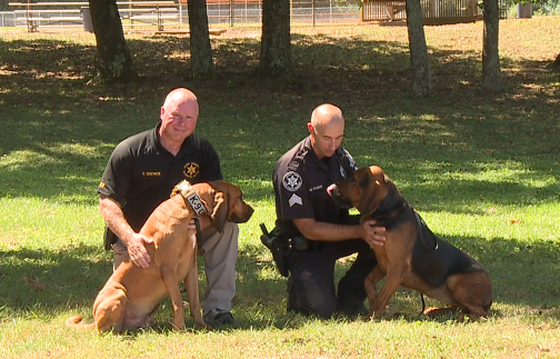 Henry County Sheriff's Office discusses successes of K-9