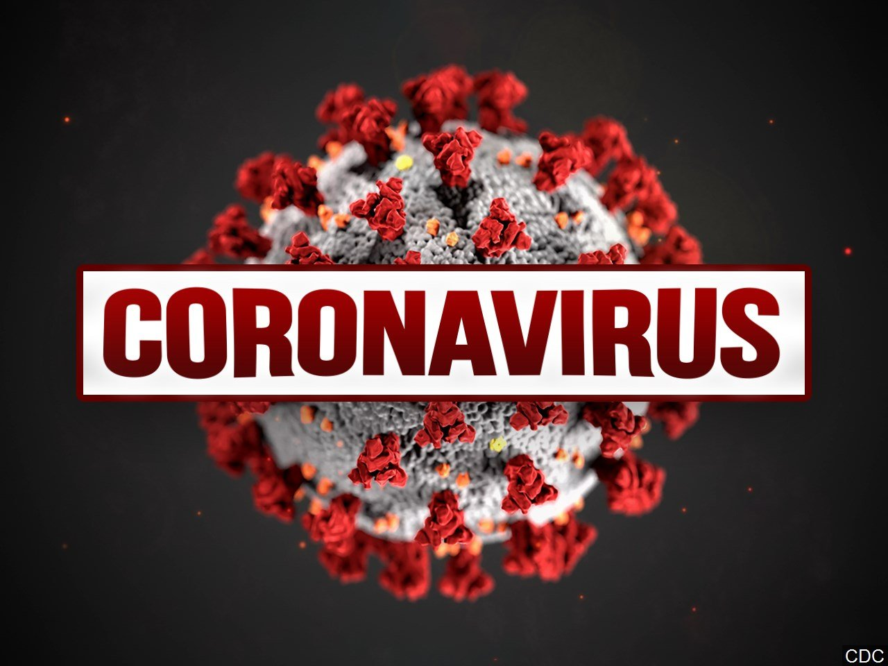 Image result for coronavirus germ