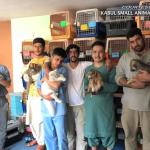 Kabul Small Animal Rescue 2