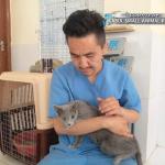 Kabul Small Animal Rescue 6