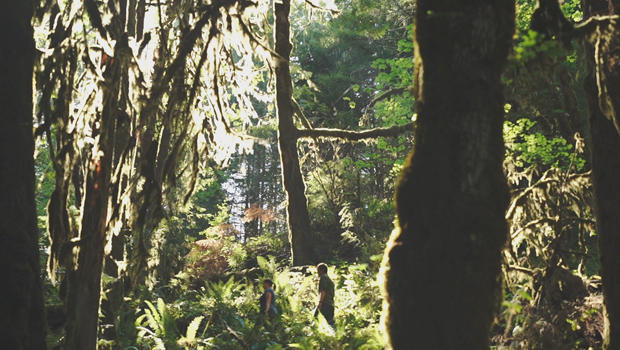 chandra-legue-of-oregon-wild-with-jeff-glor-in-old-growth-forest-620.jpg