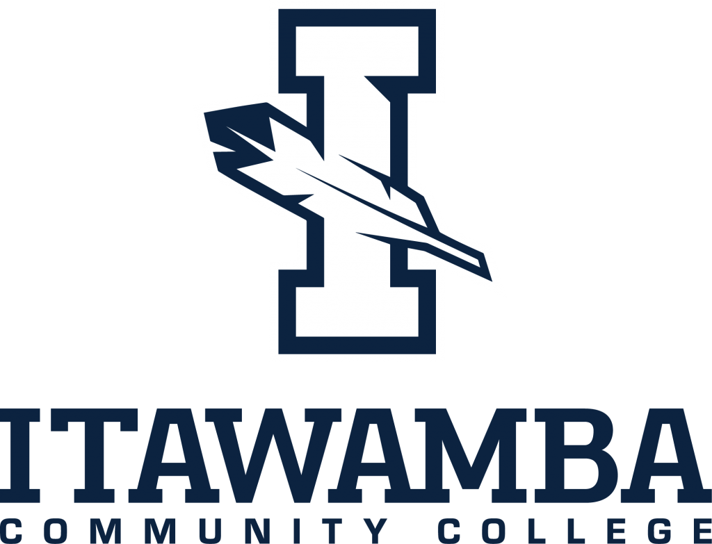Icc Logo2