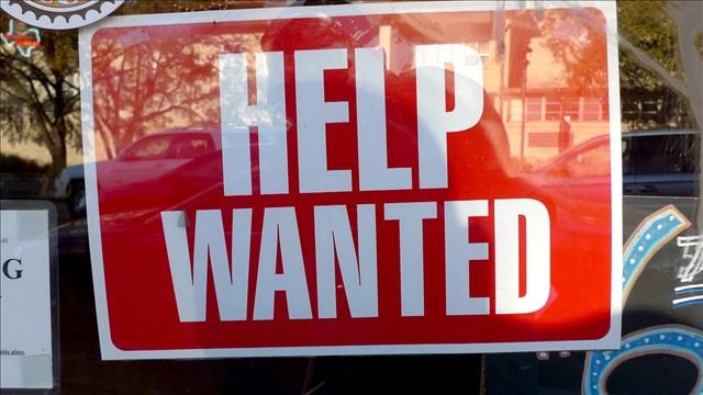Job Help Wanted