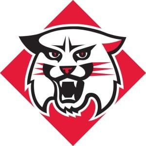 davidson-wildcats.jpg