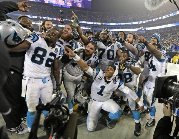 panthers nfl team