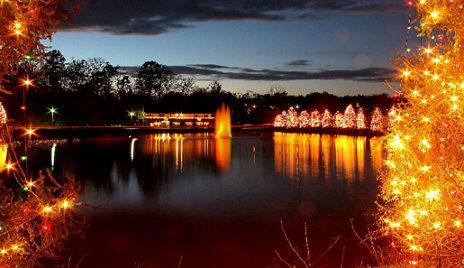 Mcadenville Christmas Lights.Mcadenville Lights Up Once Again To Become Christmas Town