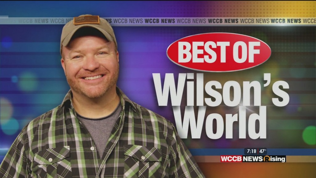 Wilson's World: Best Of Wilson's World On Monday, 3 16 20