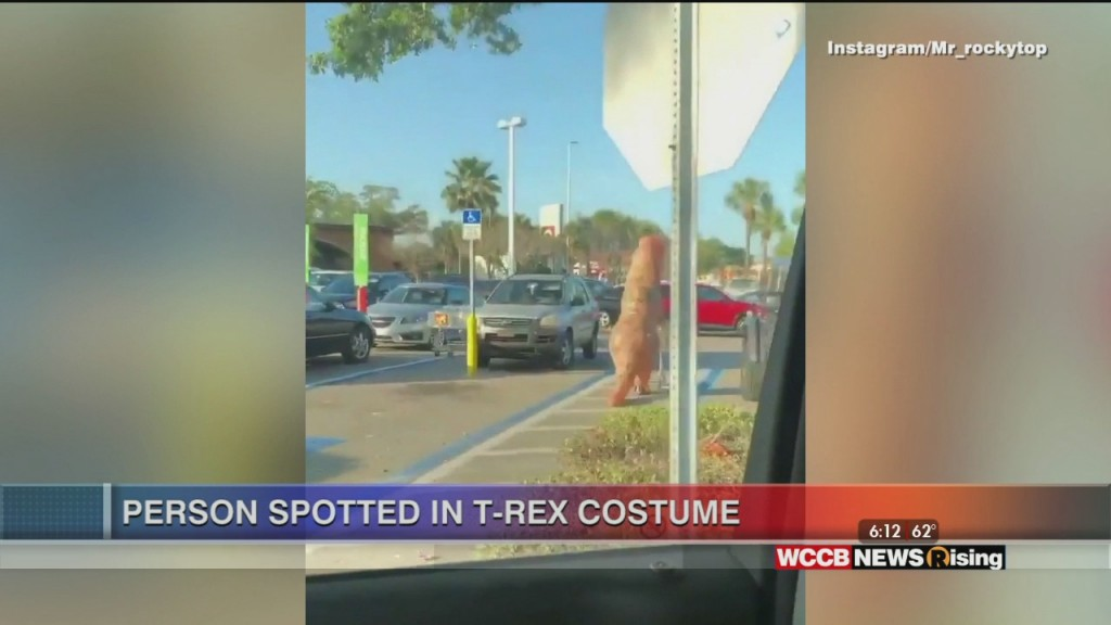 Viral Videos: Rudy, T Rex Shopper And Baby Momma Dance