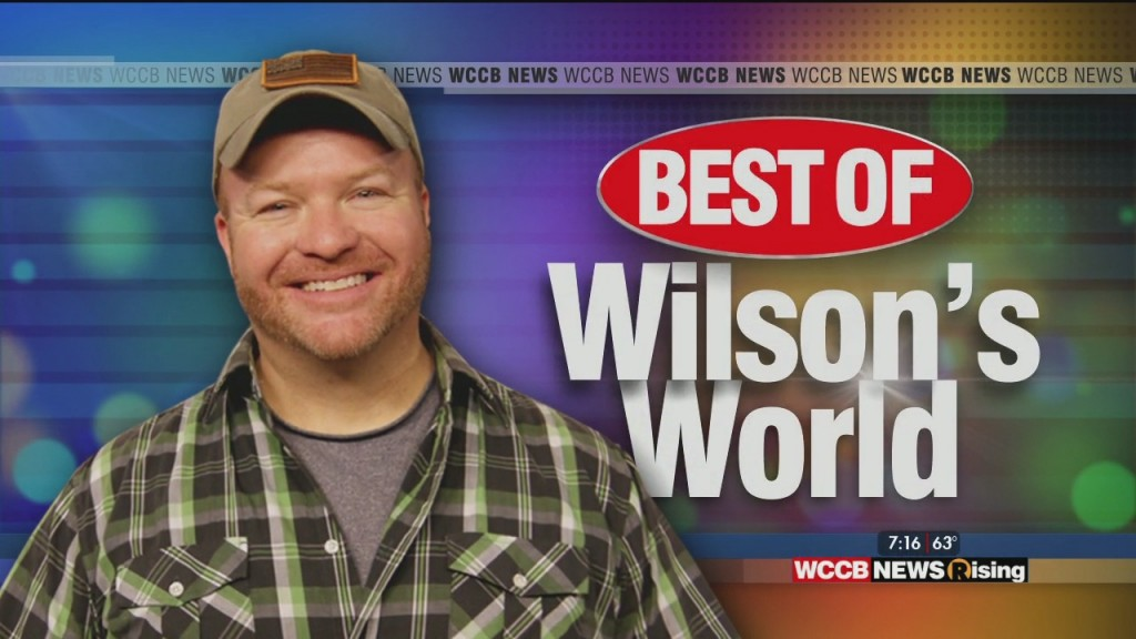 Best Of Wilson's World: Knights, Marcel The Monkey, School Of Rock, Bumblebee, Dry Pro, Carolina Show Ski