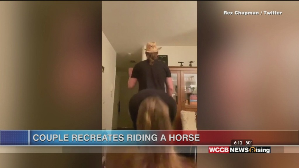 Viral Videos: Human Horse And Dancing Zookeeper