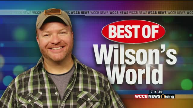 Best Of Wilson's World: Visits With The Honey Bees, Amelie's French Bakery, Mcdonald's, Discovery Place, And Eez Fusion & Sushi
