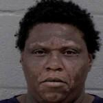 Sylvia Jones Larceny Of Motor Vehicle (felony) Possess Stolen Motor Vehicle