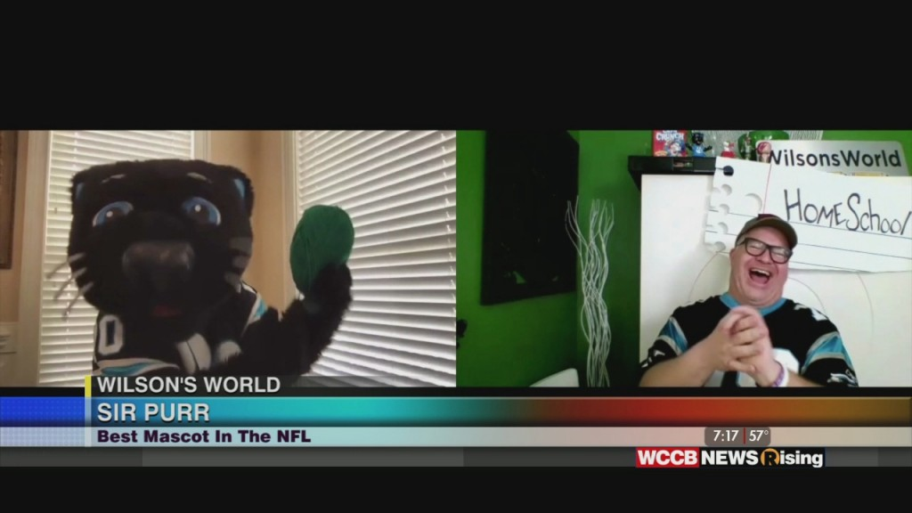 Wilson's World: A Visit From Sir Purr And