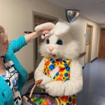 Pmc Easter Bunny Temperature