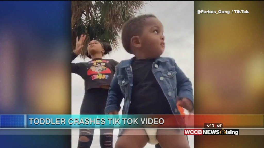Viral Videos: Toddler Crashes Tiktok Video & Dad Surprises Son With Organ