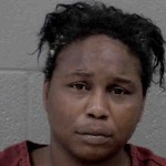 Francine Laney Assault Government Official Or Employee Assault With A Deadly Weapon Mal Conduct By Prisoner Resisting Public Officer