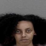 Salome Berhanu Attempt Break Or Enter Motor Vehicle