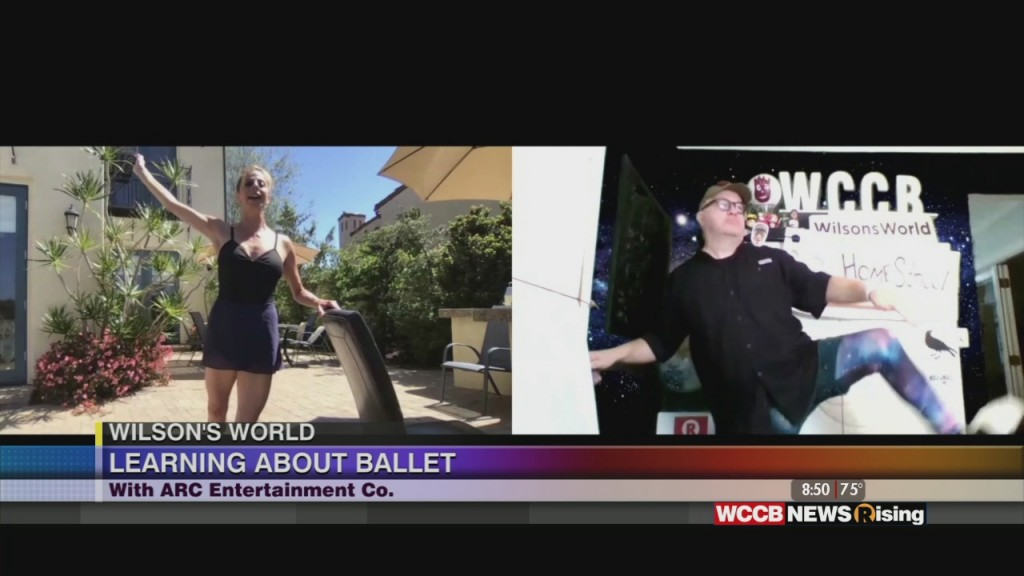 Wilson's World: A Homeschool Lesson With A Homeshool Less With A Performance From The World Of Ballet