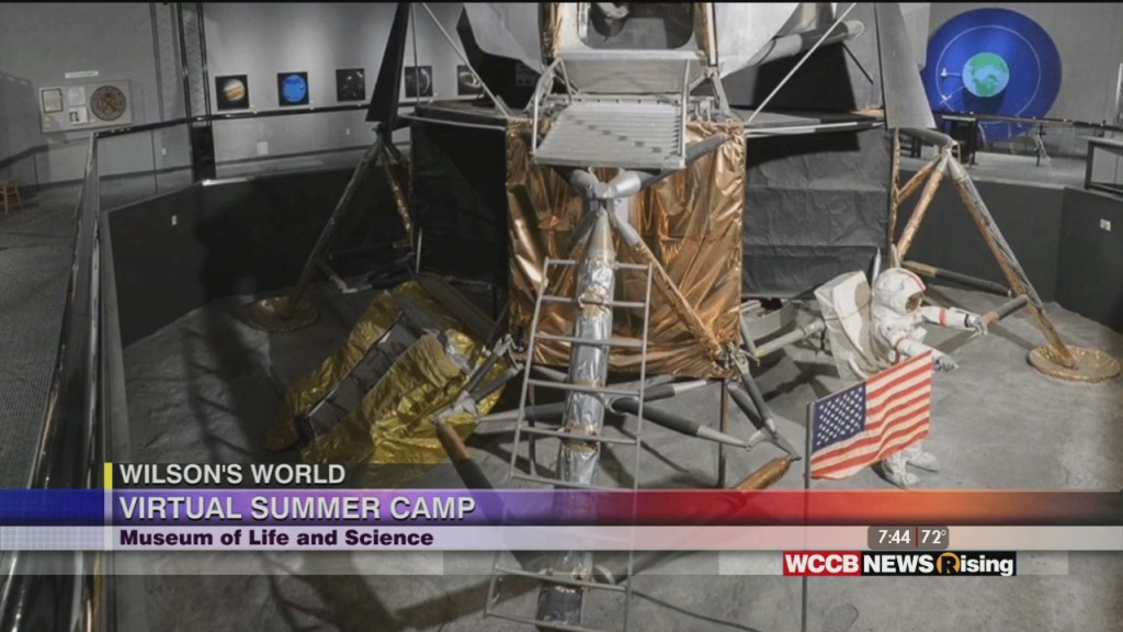 Wilson's World: Stay At Home & Virtual Camps With The Museum Of Life And Sciene In Durham