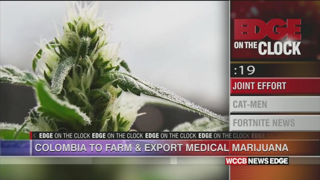 Colombia To Farm And Export Medical Marijuana