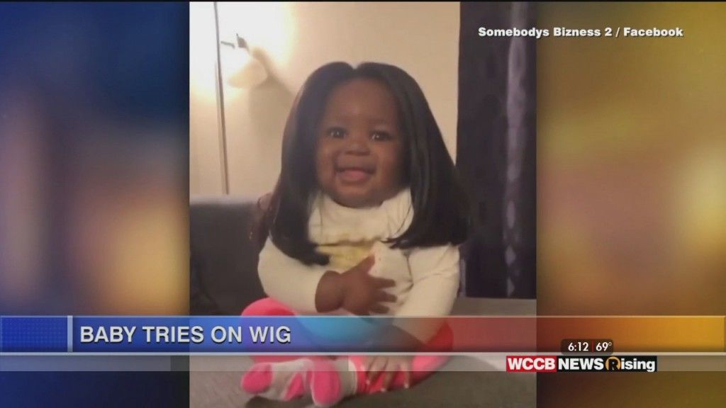 Viral Videos: Dog Apologizes To Brother And Baby Tries On Wig