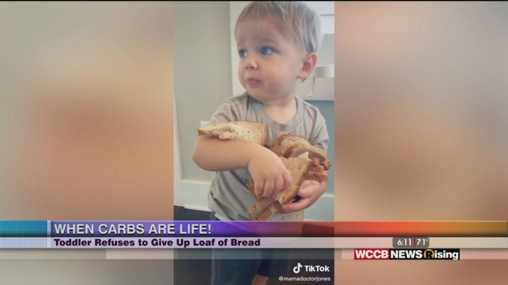 Viral Videos: Toddler Refuses To Give Up Bread And Triplets Invade Fridge