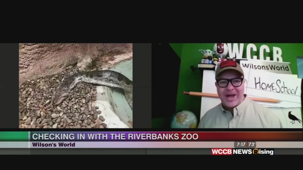 Wilson's World: Visiting The Aquarium Reptile Complex At The Riverbanks Zoo & Aquarium