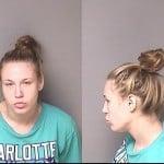 Madison Mckinney –robbery –motor Vehicle Larceny –assault