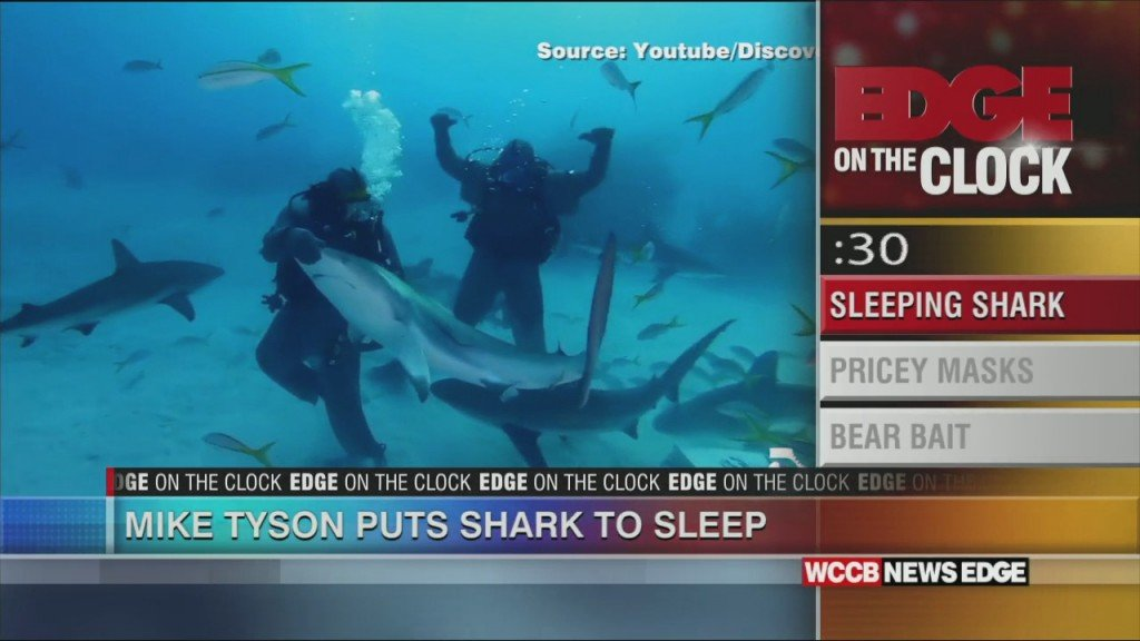 Edge On The Clock: Mike Tyson Vs Shark