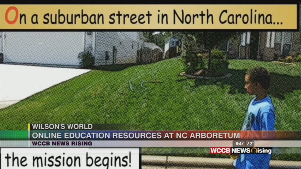 Wilson's World: Learning More About The North Carolina Arboretum In Asheville