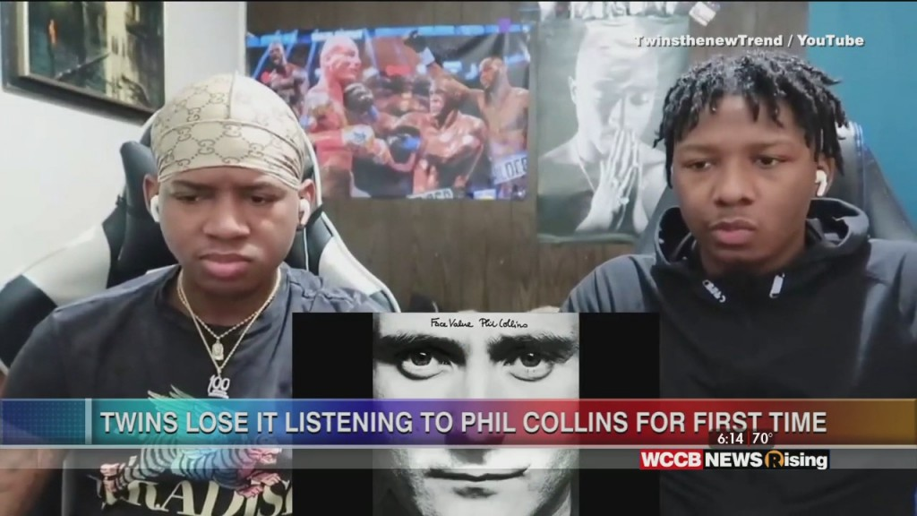 Viral Videos: Seagull Shopflifter & Twin Brothers Listen To Phil Collins For First Time