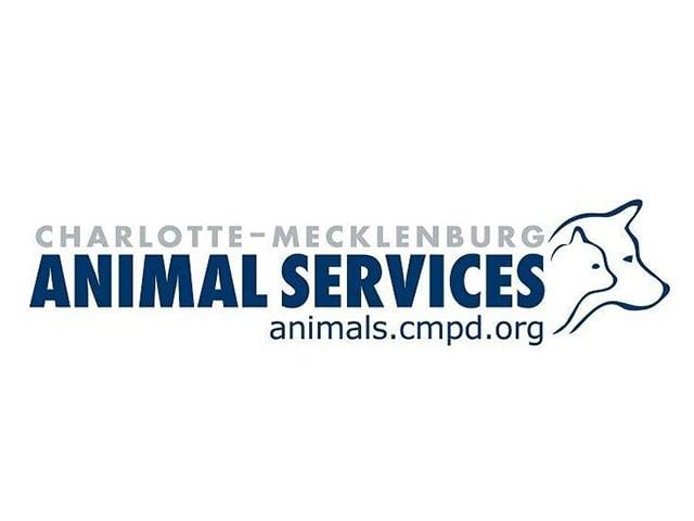 Cmpd Ac&c Logo Copy