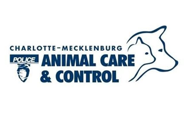 Cmpd Ac&c Logo