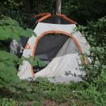 Tent City 36