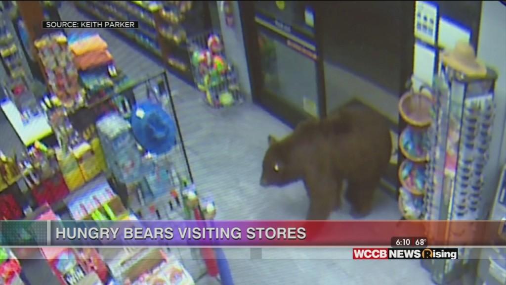 Viral Videos: Homeschool Fun & Bears Visit Convenience Stores