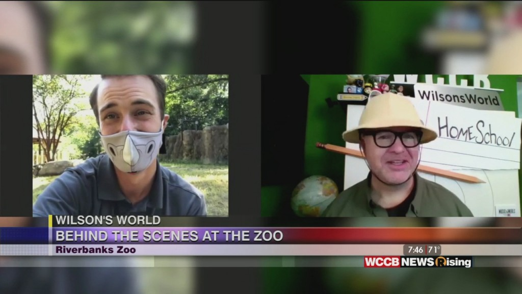 Wilson's World Homeschool: Learning More About The Rhinos At The Riverbanks Zoo & Garden