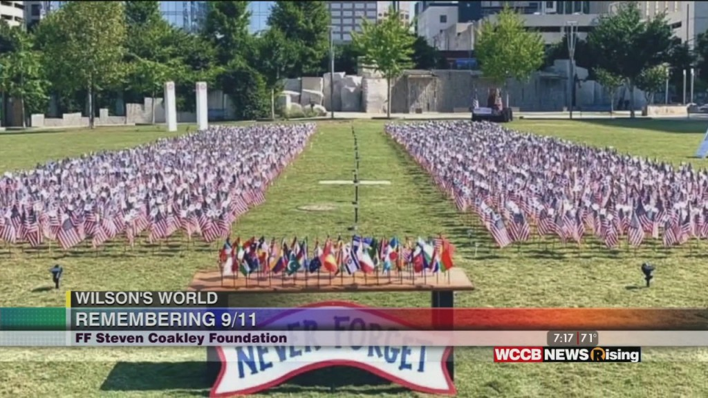 Wilson's World: Placing The Flags For The 2020 Flags Of Remembrance Memorial Begins Today