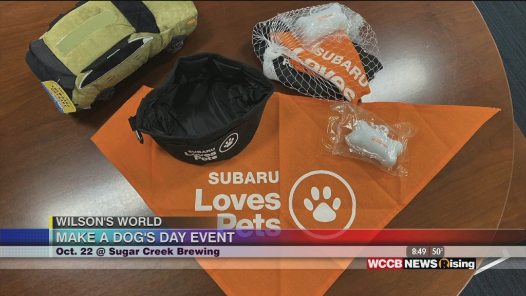 Wilson's World: Make A Dog's Day With Subaru Loves Pets Program And Cmpd Ac&c