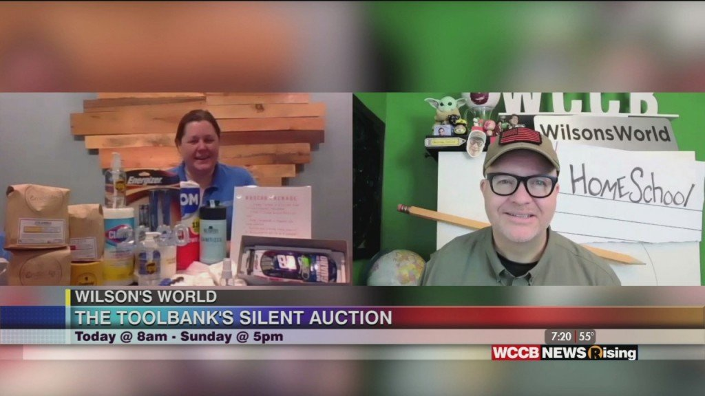 Wilson's World: The Charlotte Toolbank's Silent Auction Starts This Morning!