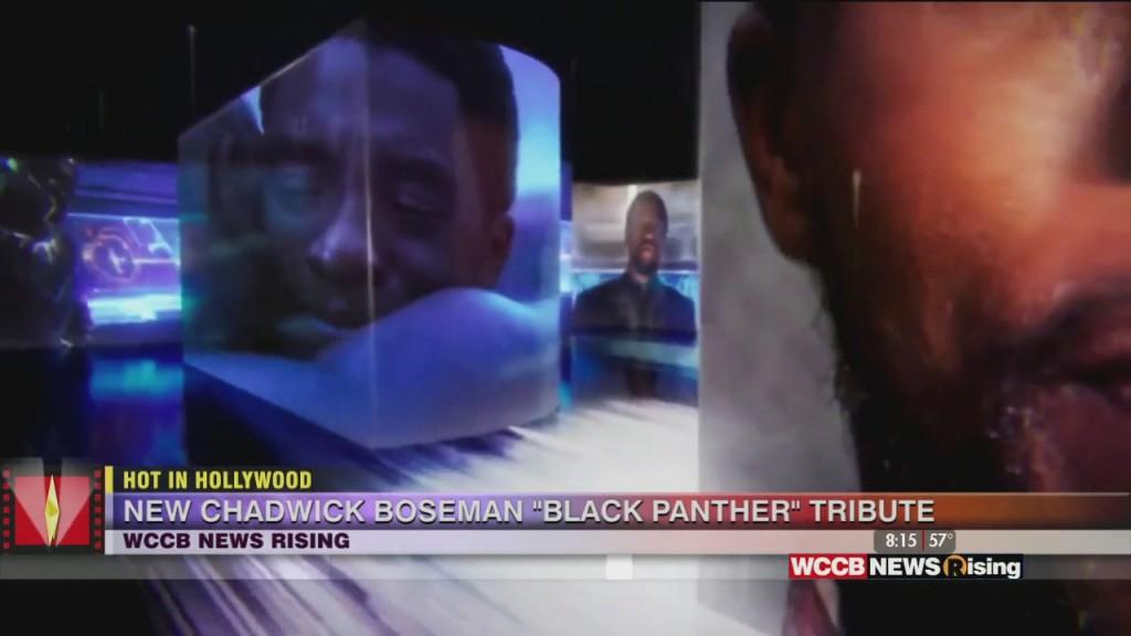 Hot In Hollywood: 'darth Vader' Actor Dies And 'mavel' Honors Chadwick Boseman