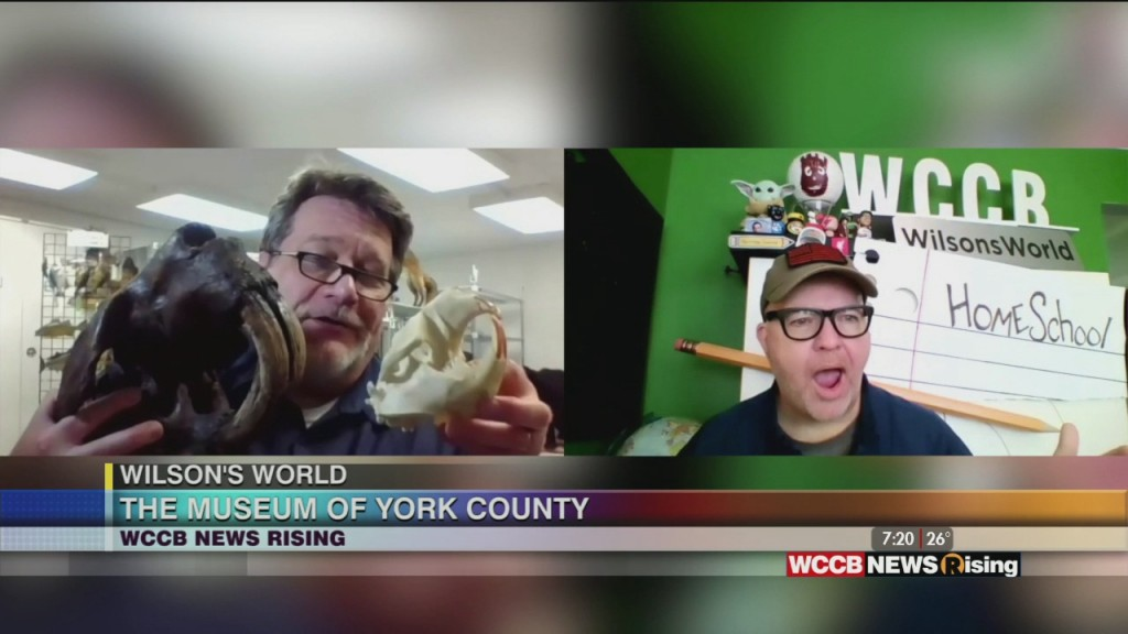 Wilson's World Homeschool: The Final Years Of The Ice Age With Dr. Steve Of The Museum Of York County
