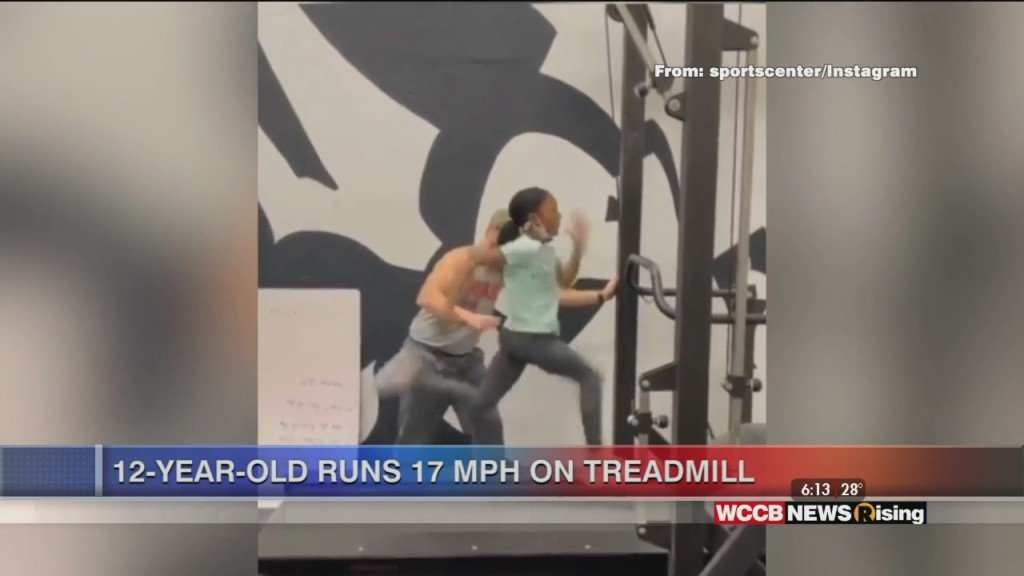 Viral Videos: Baby Monkey Makes Debut And 12 Year Old Runs 17 Mph On Treadmill
